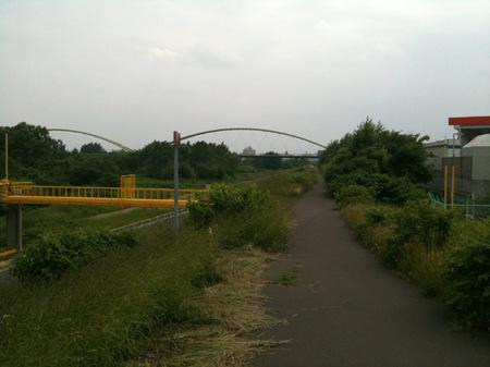千歳鶴 豊平川.jpg